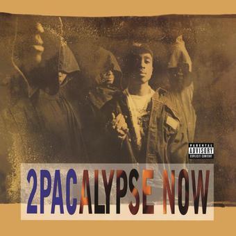 Vinyl 2Pacalypse Now (2 LP) Book
