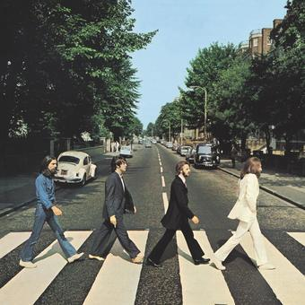 Vinyl Abbey Road Book