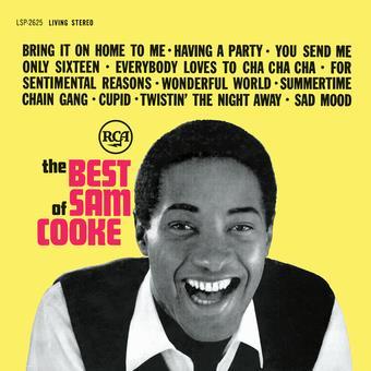 Vinyl Best Of Book
