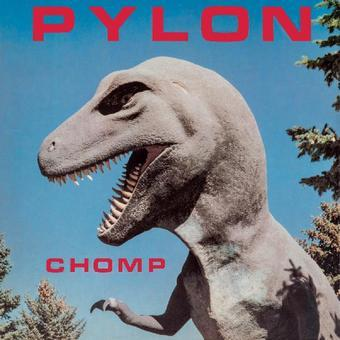 Vinyl Chomp Book
