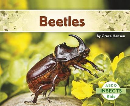 Beetles - Book  of the Insects