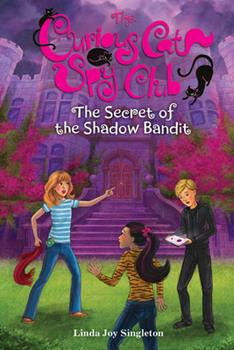 Hardcover The Secret of the Shadow Bandit, 4 Book