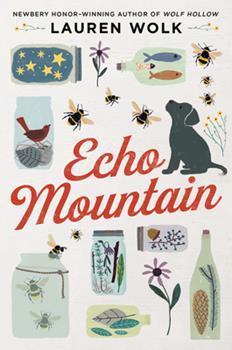 Hardcover Echo Mountain Book