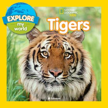 Paperback Explore My World: Tigers Book