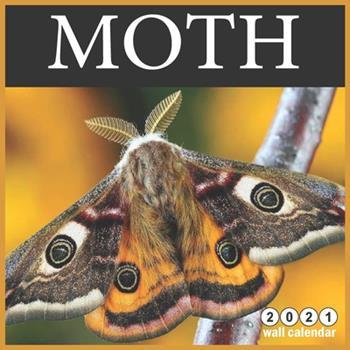 Paperback Moth 2021 Wall Calendar: 16 Months calendar 2021, Cute Butterflies Calendar 2021 Book