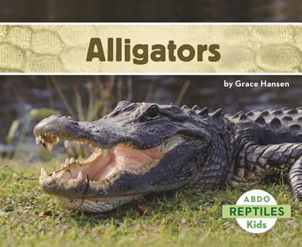 Caimanes / Alligators - Book  of the Animales que Veo en el Zoológico