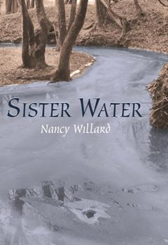 Sister Water 0679407022 Book Cover