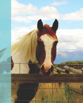 Paperback Pretty Horse Rocky Mountain Animal Photograph Painted Pony Wide-ruled Lined School Composition Notebook Book