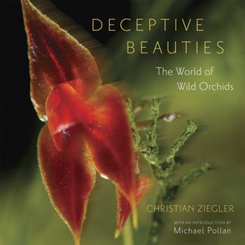Deceptive Beauties: The World of Wild Orchids 0226982971 Book Cover