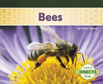 Bees - Book  of the Insects