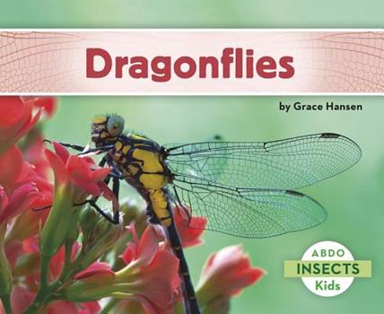 Dragonflies - Book  of the Insects