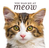 You Had Me at Meow 1640303855 Book Cover