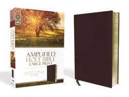 The Amplified Bible 0310951852 Book Cover