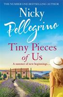Tiny Pieces of Us 140917901X Book Cover