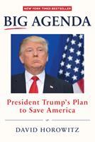 Big Agenda: President Trump's Plan to Save America 1630060879 Book Cover