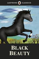Black Beauty (Adaptation) 0721409563 Book Cover