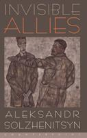 Invisible Allies 1887178082 Book Cover