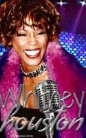 whitney Houston Tribute Drawing Journal 0464083621 Book Cover