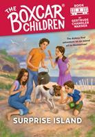 Surprise Island 0807576743 Book Cover