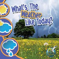 What's The Weather Like Today? 1617419397 Book Cover