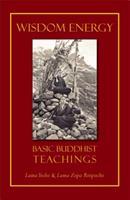 Wisdom Energy 0861710088 Book Cover