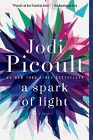 A Spark of Light 0345544986 Book Cover
