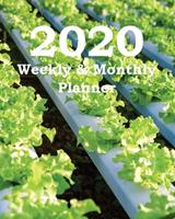 2020 Weekly & Monthly Planner: Planners and Organizers (Plants for Hydroponics Cover) 167375970X Book Cover