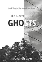 The Secret Life of Ghosts: The Suspenseful Culmination 1689621907 Book Cover