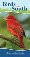 Birds of the South & Gulf States: Your Way to Easily Identify Backyard Birds (Adventure Quick Guides)