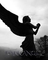 Dark Angel Journal 046405916X Book Cover
