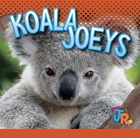 Koala Joeys 1644660962 Book Cover