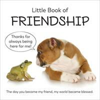 Little Book of Friendship 164030472X Book Cover