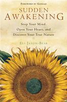 Sudden Awakening 1932073116 Book Cover