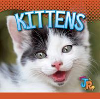Kittens 1623101395 Book Cover