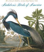 Audubon's Birds Of America (The Audubon Society Baby Elephant Folio)