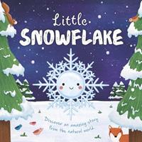 Little Snowflake 1838528415 Book Cover