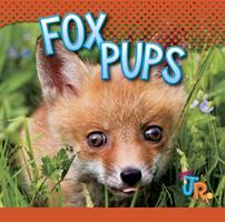 Fox Pups 1644660946 Book Cover