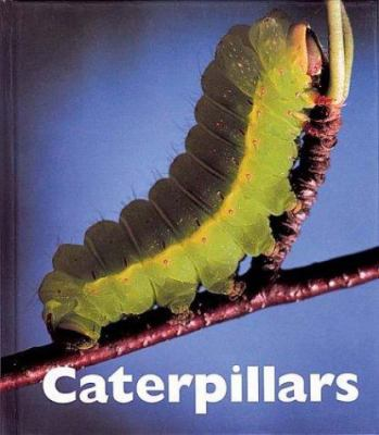 Caterpillars - Merrick, Patrick