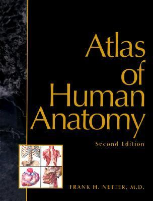 Atlas Of Human Anatomy Book By Frank H Netter