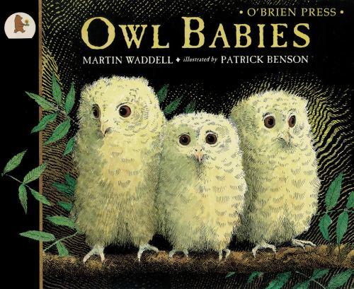 Paperback Owl Babies Book