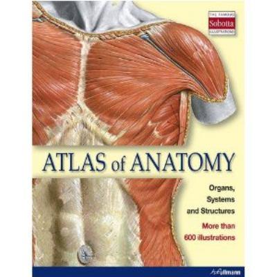 Hardcover Atlas of Anatomy Book