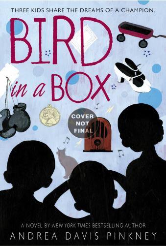 Bird in a Box 0316074039 Book Cover