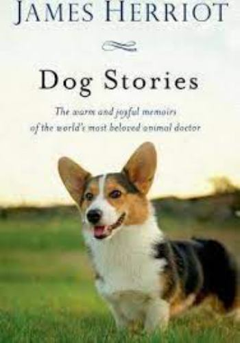 Paperback James Herriot's Dog Stories : Warm and Wonderful Stories about the Animals Herriot Loves Best Book