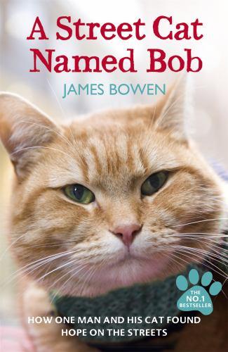 Paperback A Street Cat Named Bob Book
