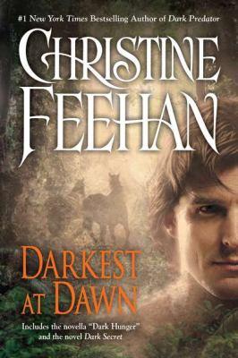 Darkest at Dawn - Book  of the Dark