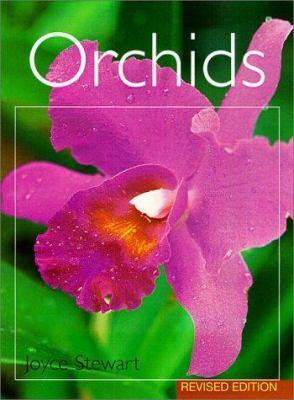 Orchids - Joyce Stewart