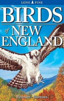 Birds of New England book by Roger Burrows