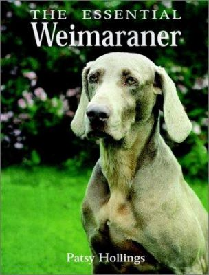 The Essential Weimaraner book by Patsy Hollings