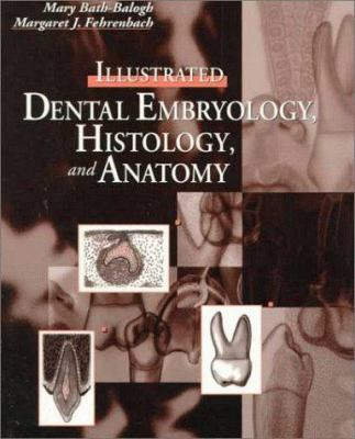 Illustrated Dental Embryology,... book by Margaret J. Fehrenbach