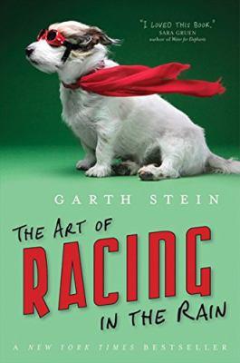 Paperback Art Of Racing In The Rain Book